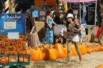Selma Blair & Son Arthur Pumpkin Patch Fun 13