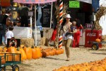 Selma Blair & Son Arthur Pumpkin Patch Fun 9