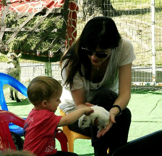 Selma Blair & Arthur Saint At Petting Zoo