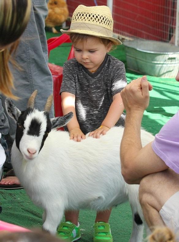 Selma Blair & Jason Bleick Take Little Arthur To The Petting Zoo 3