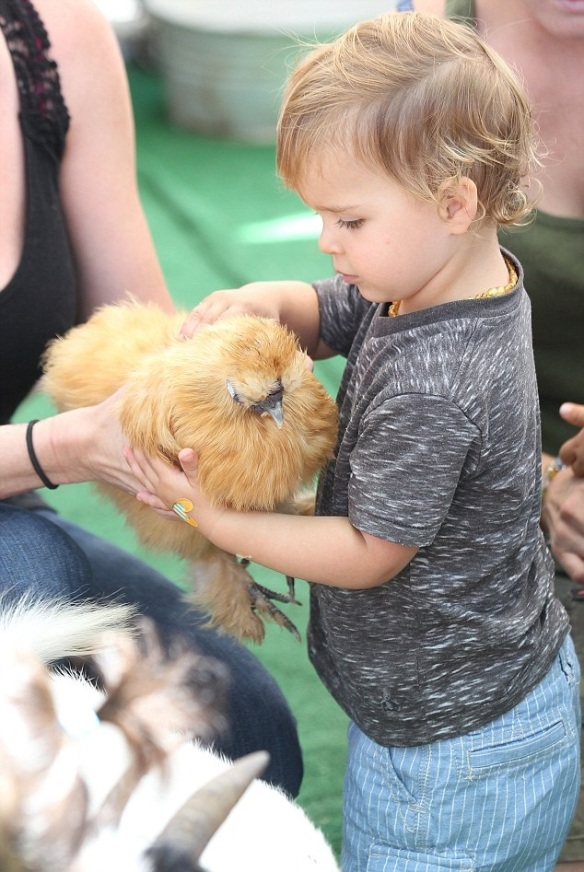 Selma Blair & Jason Bleick Take Little Arthur To The Petting Zoo 4