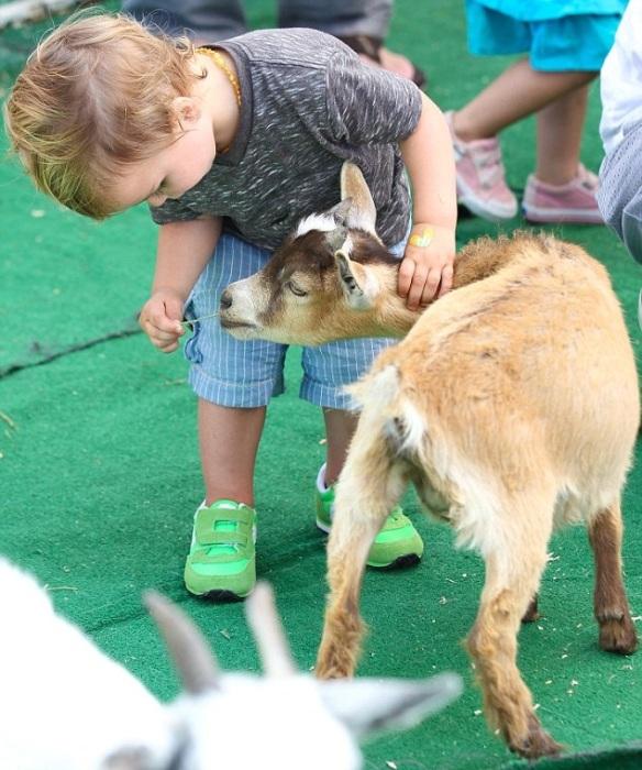 Selma Blair & Jason Bleick Take Little Arthur To The Petting Zoo 5