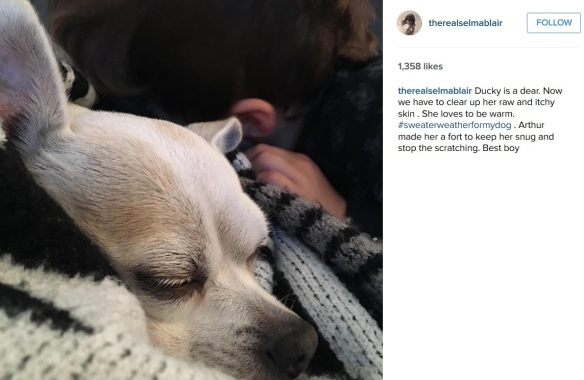 Selma Blair Adopts a senior dog